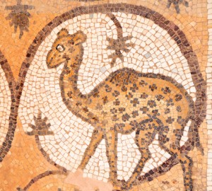 Byzantine mosaic in the church in Petra